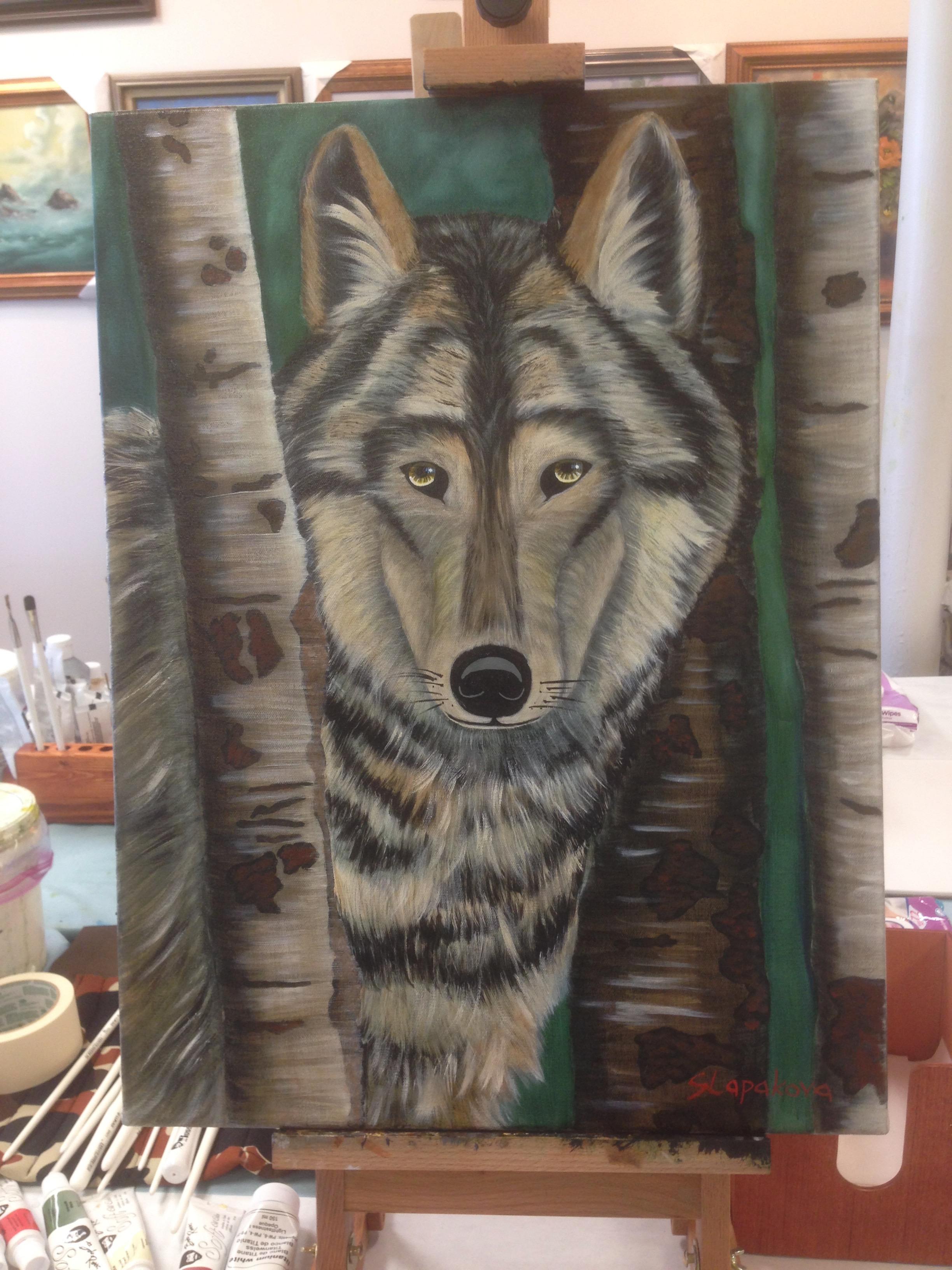 Vlk - olejomalba, 40 x 60 cm